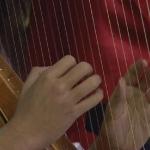 harpa-2